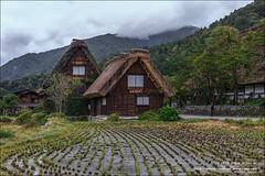 Aldea Shirakawa-go, Gifu (Japón) (Anna & Oskar) Tags: gifuken japã³n jpn ogimachi canon viaje travel 1dx landscape paisaje national park imperio sol naciente otoño autumn japón