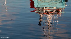 Reflection (patrick_milan) Tags: brest harbour bateau ship boat voilier pêche sailing fishing iroise ocean port quay quai buoyant buoy tugboat saariysqualitypictures hull bow reflection eau water sea mer reflet