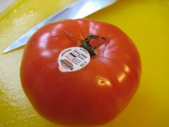 BeefSteak Tomato #4799