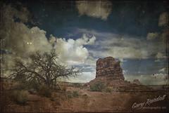 DSC_8996-2 (Gary Randall) Tags: sky clouds utah desert textures canyonlands canyons americansouthwest themaze landofstandingrocks garyrandall