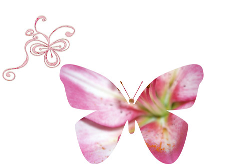 pink-saturday-butterfly-&-bow