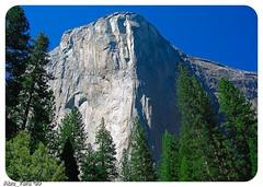 USA-Trip_2004-54 (Dhowayan (Abu Yara)) Tags: california scenery yosemite napa sanfransisco yosemitepark usatrip2004