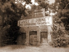 Fancy Honey (Brian Brown Photography/Vanishing Media) Tags: abandoned sign rural ga georgia advertising photo image bees honey photograph forgotten fancy generalstore apiary waynecounty altamaha apiculture gardi apiaries vanishingsouthgeorgia copyrightbrianbrown