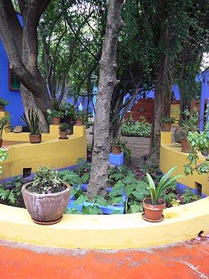 jardin kahlo.jpg