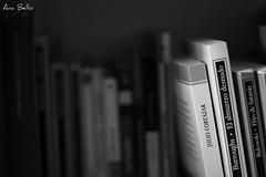 Msica de caeras (.Ana Bello.) Tags: 50mm ana burroughs desenfoque contraste libros placer bukowski lectura bello cortzar nitidez anabello