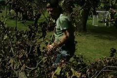 _MG_6472.JPG (zimbablade) Tags: trees sleepyhollow dougmiller videopoem