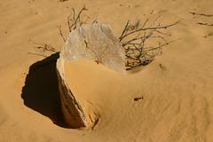 Pinnacles Desert Nambung National Park Western...