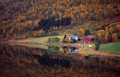 Autumn in Norway (Hart from Golborne) Tags: norwaycruisenorwaycruise