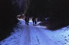 Scan10315 (lucky37it) Tags: e alpi dolomiti cervino