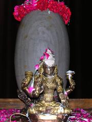 Home ShivaRatri   DSCN0341