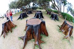 DSC_0429 ([+babydoll]) Tags: sea art bondi fisheye sculpturebythesea 2009 artworks sculpturesbythesea scuptures fisheeye