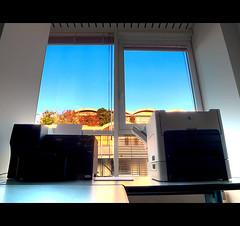 l'autunno fuori (buttha) Tags: autumn window office finestra autunno ufficio printers stampanti stampante panasoniclumixdmclx3 theauthorsplaza