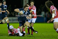 ROBH5170 (Rob vRS) Tags: tonga rugbyunion scotlanda