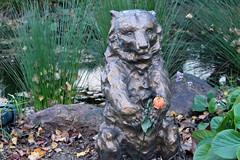 Sad Bear offers a Sad Flower