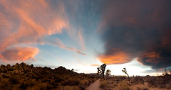 Joshua Tree Sky Big (Amicus Telemarkorum) Tags: california pink november blue sunset sky orange usa cloud weather clouds shadows glory joshuatree wideangle panoramic trail journey 2009 joshuatreenationalpark jeffreyrueppelphotography imagestich