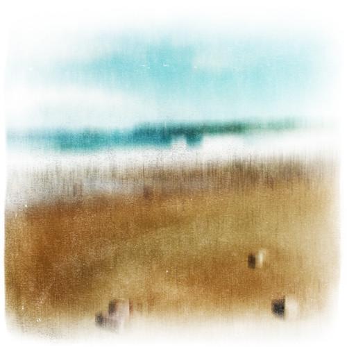 Des fois, en épluchant une clémentine, j'entends la mer...