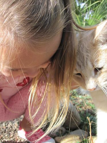 friendly garden cat