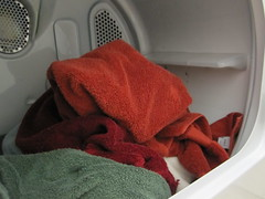Tumblr (kevinspencer) Tags: winter dry towels 2009