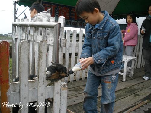 2009 12 20_49可達羊場.JPG