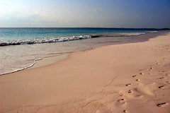 Pink Sands Beach , Harbour Island (Mike's Birds) Tags: beach caribbean bahamas eleuthera harbourisland briland pinksands