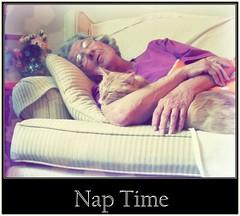 Nap Time (psyko kitty) Tags: sleeping love lady cat nap gimp oldwoman companion
