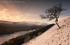 Light On A Winters Morning (.Brian Kerr Photography.) Tags: winter snow morning scotland scotspirit visitscotland cold loch treessunrise twitter facebook instagram flickr weather frozen landscape photography bright nature natural landscapephotography mountains hills sunrise briankerrphotography water lochs sky blue orange white light clouds availablelight