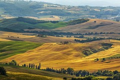 View from Montefollonico - Tuscany, Italy (dejott1708) Tags: tuscany toskana toscana italy italia italien landscape hills cypresses