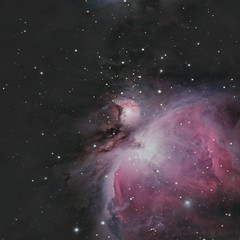 Messier 42 and 43 (remote, NM) (john.purvis) Tags: m42 m43 messierobjects messier42 messier43 dso astrophotography orion greatnebula astrometrydotnet:id=nova1957109 astrometrydotnet:status=solved