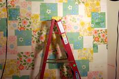 Wallpaper Wall