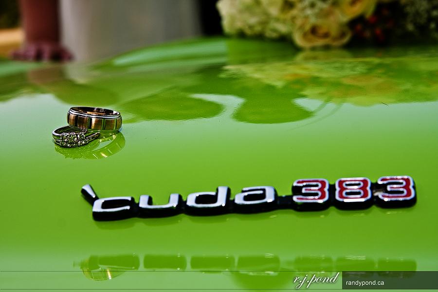 ~ Cuda-Licious ~
