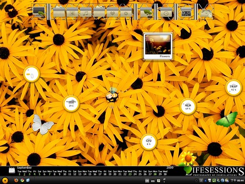 Desktop 2009-09: Memory in blossom