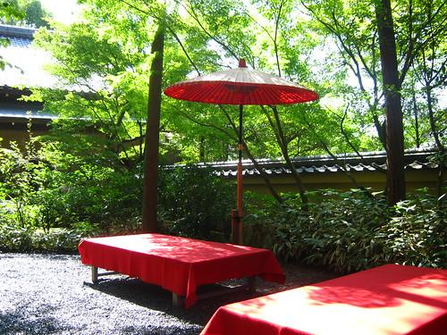 A shot of the tea garden