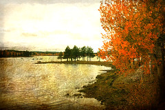 Autumn up north (JohnDan1) Tags: autumn fall sweden lappland north norrland lapponia laponia saariysqualitypictures yourwonderland magicunicornverybest