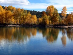 (suenosdeuomi) Tags: ca dog lake newmexico fall colors k fishing pond g c m l nm pecos notreally benedictinemonastery itsallgood landofenchantment october4th a onabeautifulday nolongerapuppy hrefhttpfiveprimeorgblackmagicb afterthepeak yetstillgorgeous sumos4birthday poodlemalteseyorkie butaveryselfconfidentselfdeterminedpotentiallyalphamalemutt butisabellagirlabouthaditwithbeingafollowerandimaginesherselftotakeoverthealphaposition ihavesomeworkinfrontofmewithmytwocuties 59lessresolution afterpostprocessing