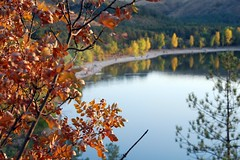 Autumn at Ankara (Tay-FUN) Tags: autumn trees fab lake reflections ankara hazan eymir sonbahar gz flickrdiamond tayfunkeeciolu