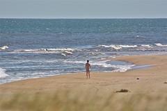 Chihuahua nudist beach - by alobos flickr