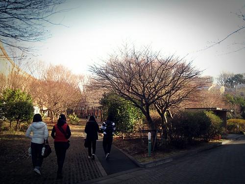 JAPAN!! part2