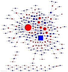 Visualizing a small group (GustavoG) Tags: blue red people flickr squares circles group graph data network discussion visualization translate members users cgi threads analysis translations discussions