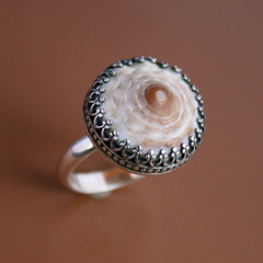 (Kira Ferrer) Tags: ocean beach silver spiral island hawaii handmade shell jewelry maui rings sterling metalsmithing silversmith