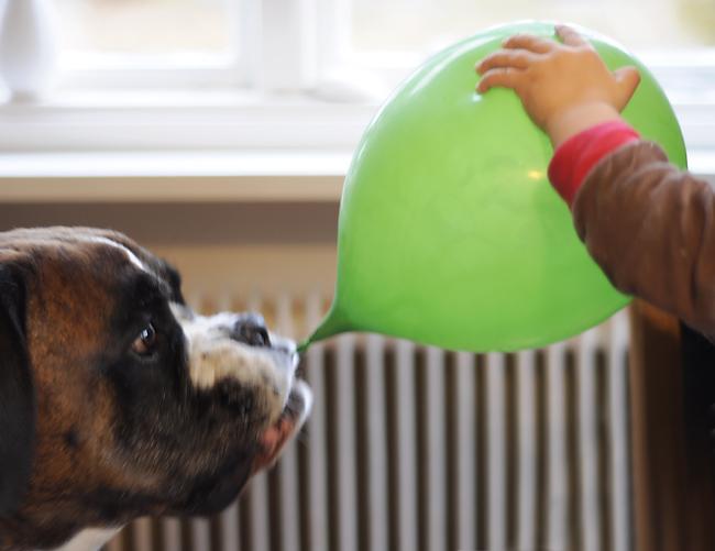 vems ballong?