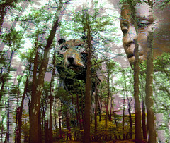 Watching Over the Forest Bear (Rusty Russ) Tags: bear wood trees sculpture woman brown black color up museum forest photoshop manipulated real island photography photo yahoo google interesting flickr image god fierce watch digitalart over goddess plum fake picasa manipulation down scene jungle frame photoediting imagination newsroom common retouching newburyport combined photographyart photogallery photoshopart stumbleupon atkinson artphotography colorchange imageprocessing photoimage imageconvert freeimage photographsart photosart freepicture imagecolor photographyartist galleryphoto theartphotography colorhtml pdfimage