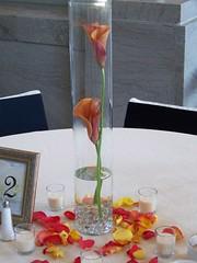 4117251629 010d137973 m Baú de ideias: Decoração de casamento laranja