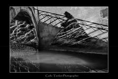 Fantasmi veneziani-Ghosts Venetian (carlo tardani) Tags: bw rio calle ombra ponte laguna venezia biancoenero ohhh maschera riflesso veneto artofimages carnevaleveneziano bestcapturesaoi gennaio2012challengewinnercontest