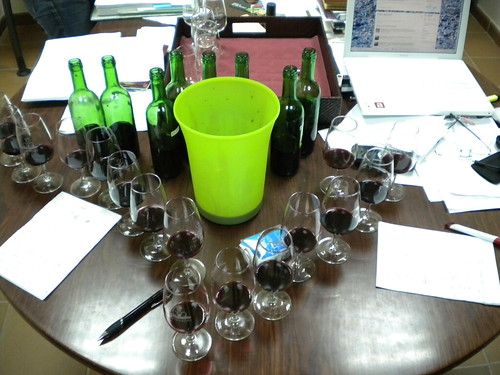 Tasting red Ports from 2009 harvest