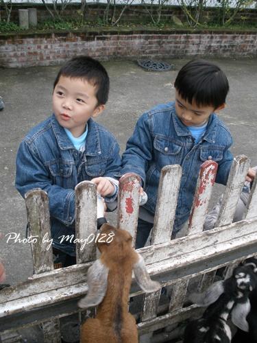 2009 12 20_43可達羊場.jpg