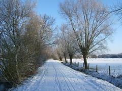 Between Muizen and Bonheiden (LHOON) Tags: belgium belgique belgi mechelen gr12