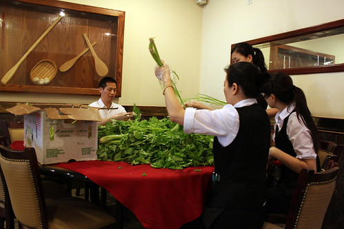 prepping the chinese celery