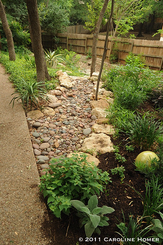 Garden beds surround a greenbelt runoff