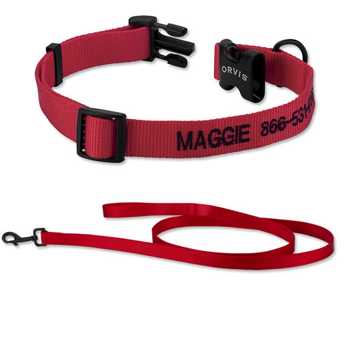 collar and lead