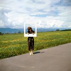 Polaroid+de+locura+ordinaria